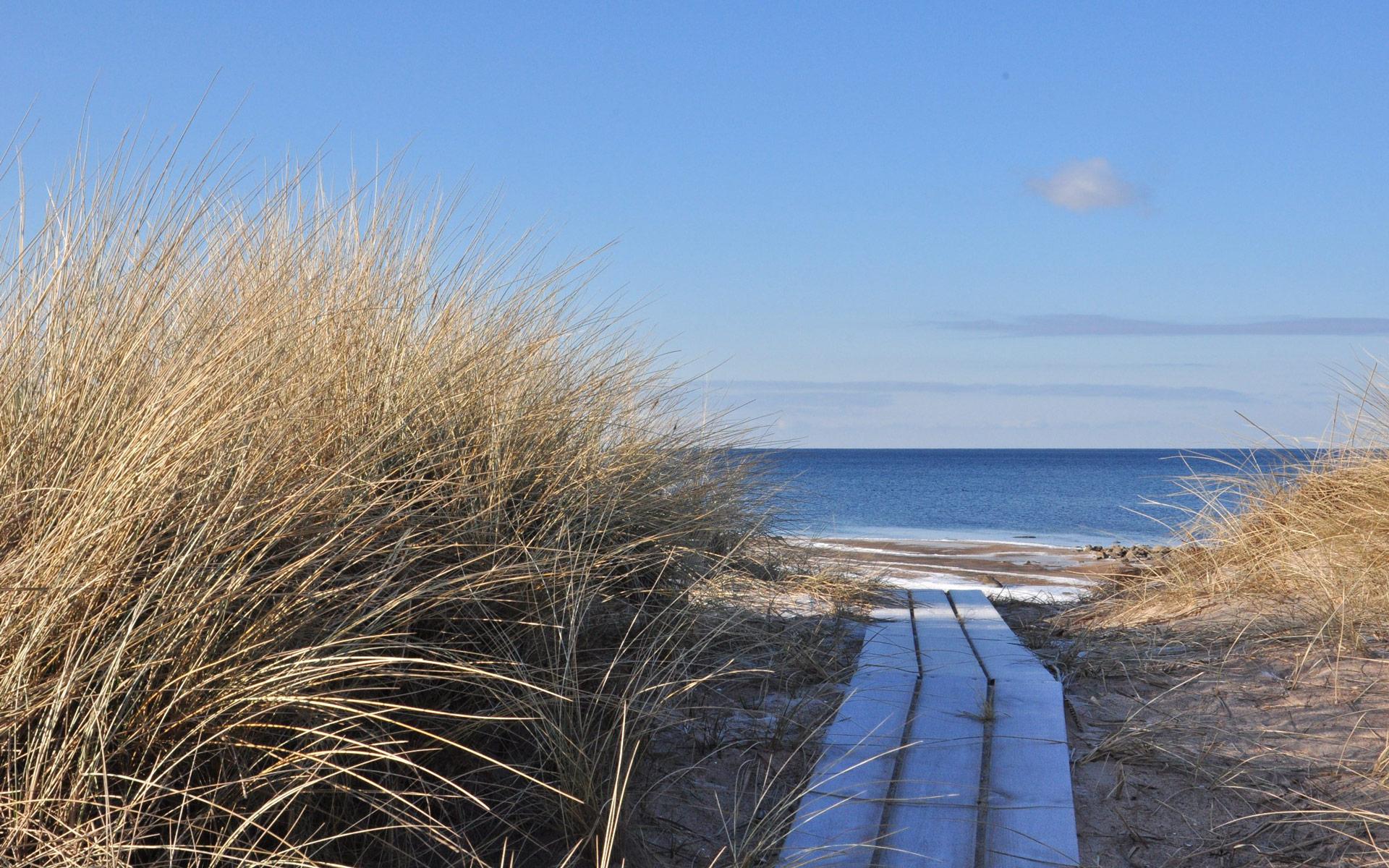 Sommer wie Winter...der Strand lockt immer