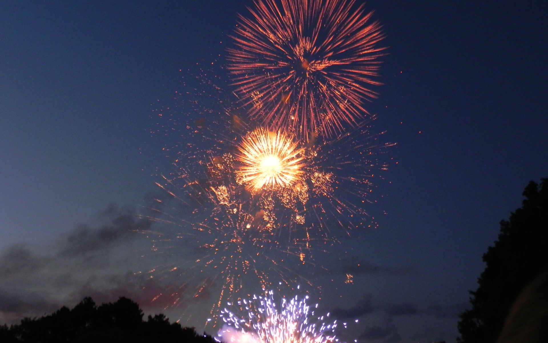 Ljusfesten 4 augusti