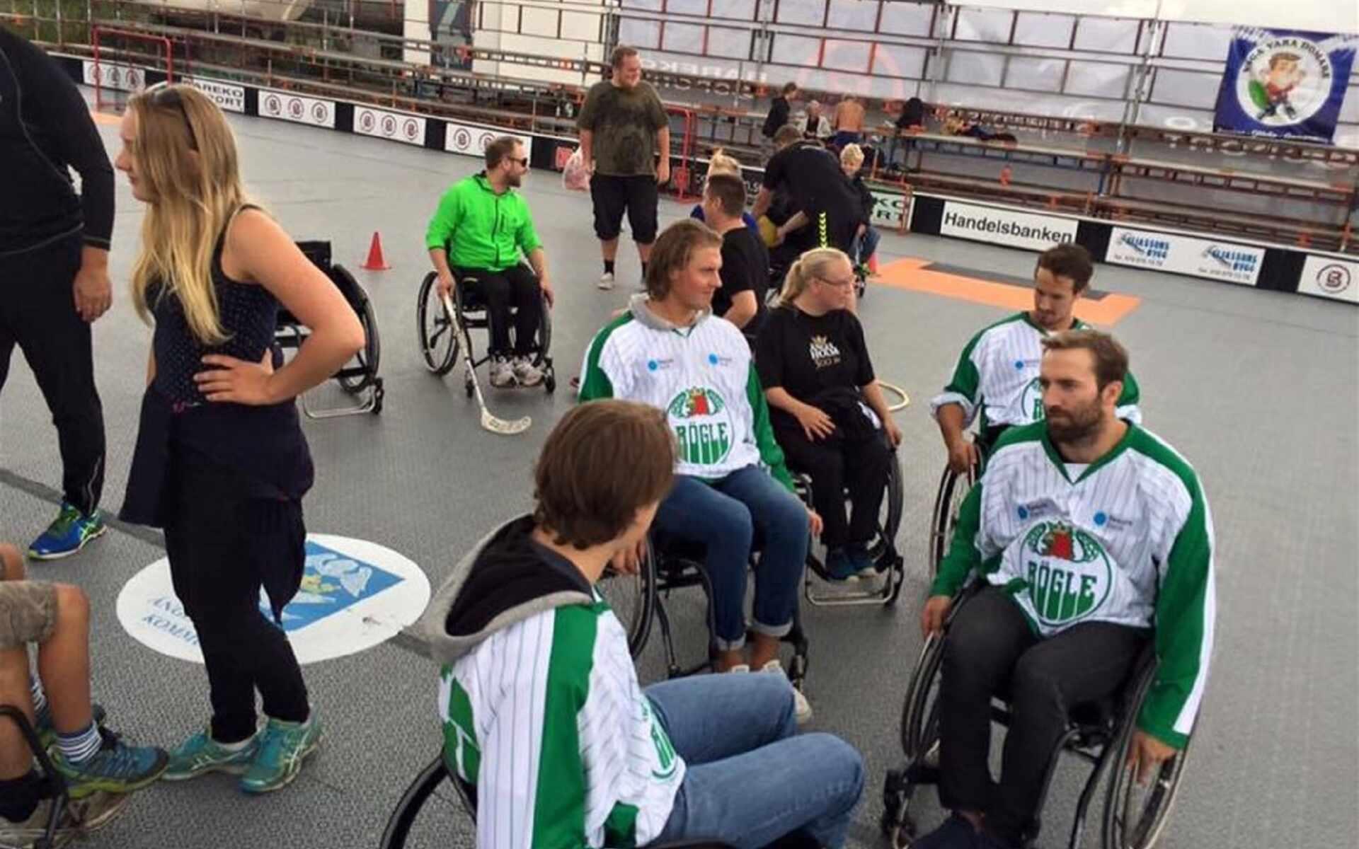 Parasportfestival och Mångfaldsparad