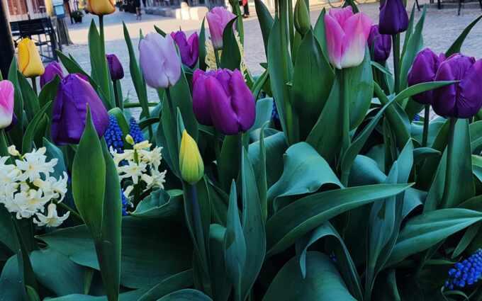 Vårvecka och Påsk På Stan 25 mars–3 april